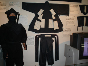 Click for a larger image of the Ninja costume